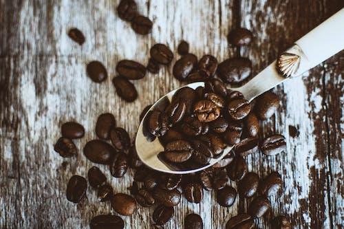 Δωρεάν στοκ φωτογραφιών με εσπρέσο, καβουρδισμένοι κόκκοι καφέ, καπουτσίνο, καφέ