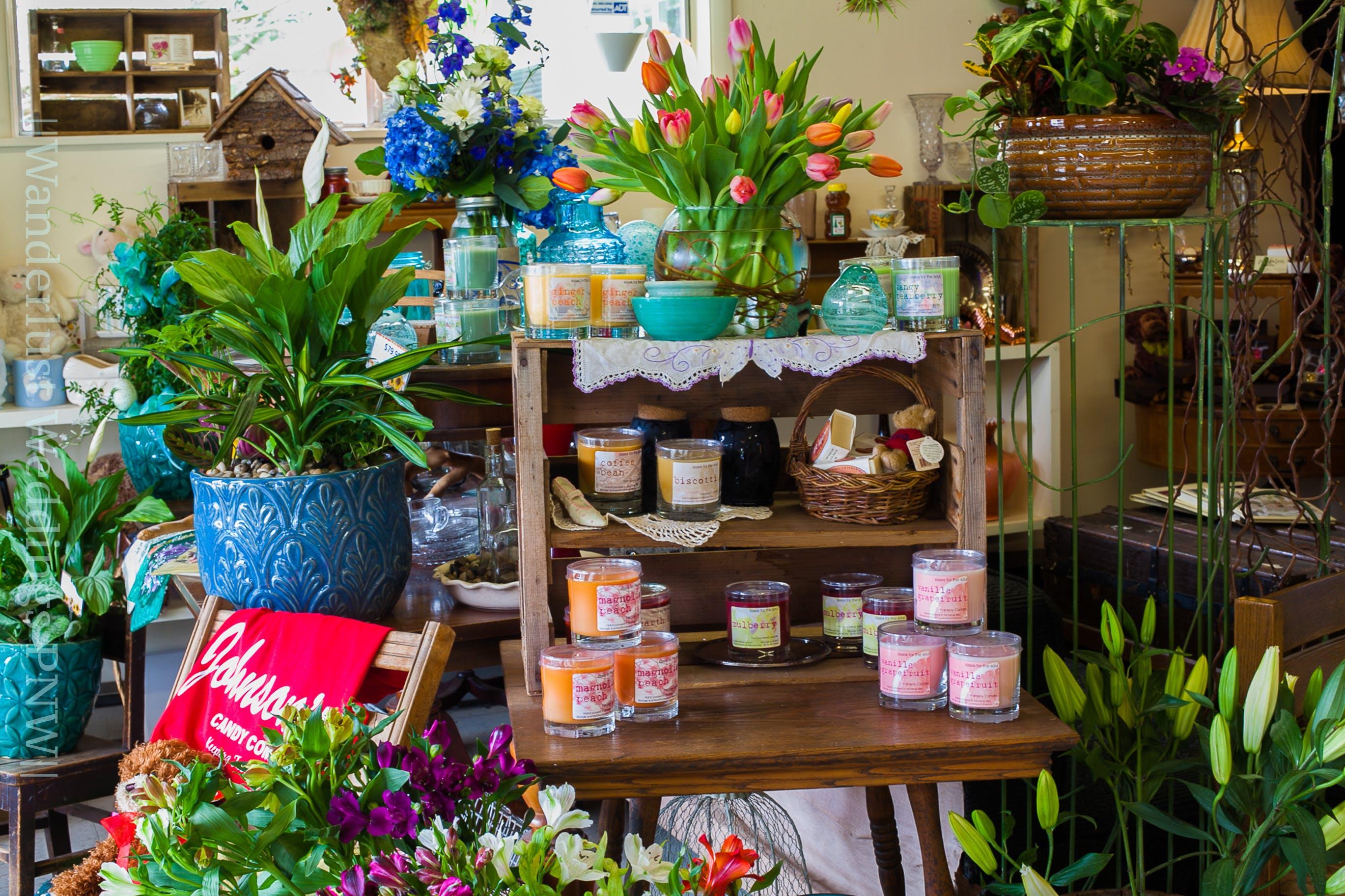 Free stock photo of beautiful flowers, blue, bouquet, boyfriend
