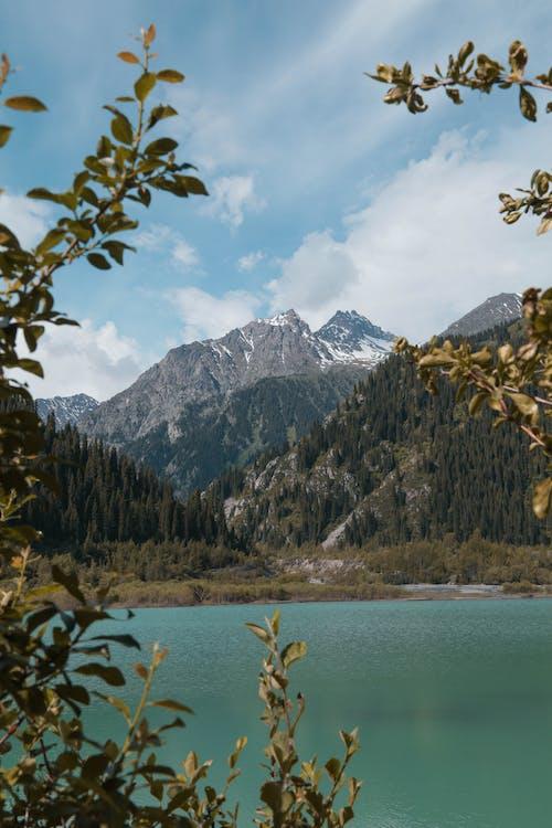 Gratis lagerfoto af bjerge, dagslys, is, landskab