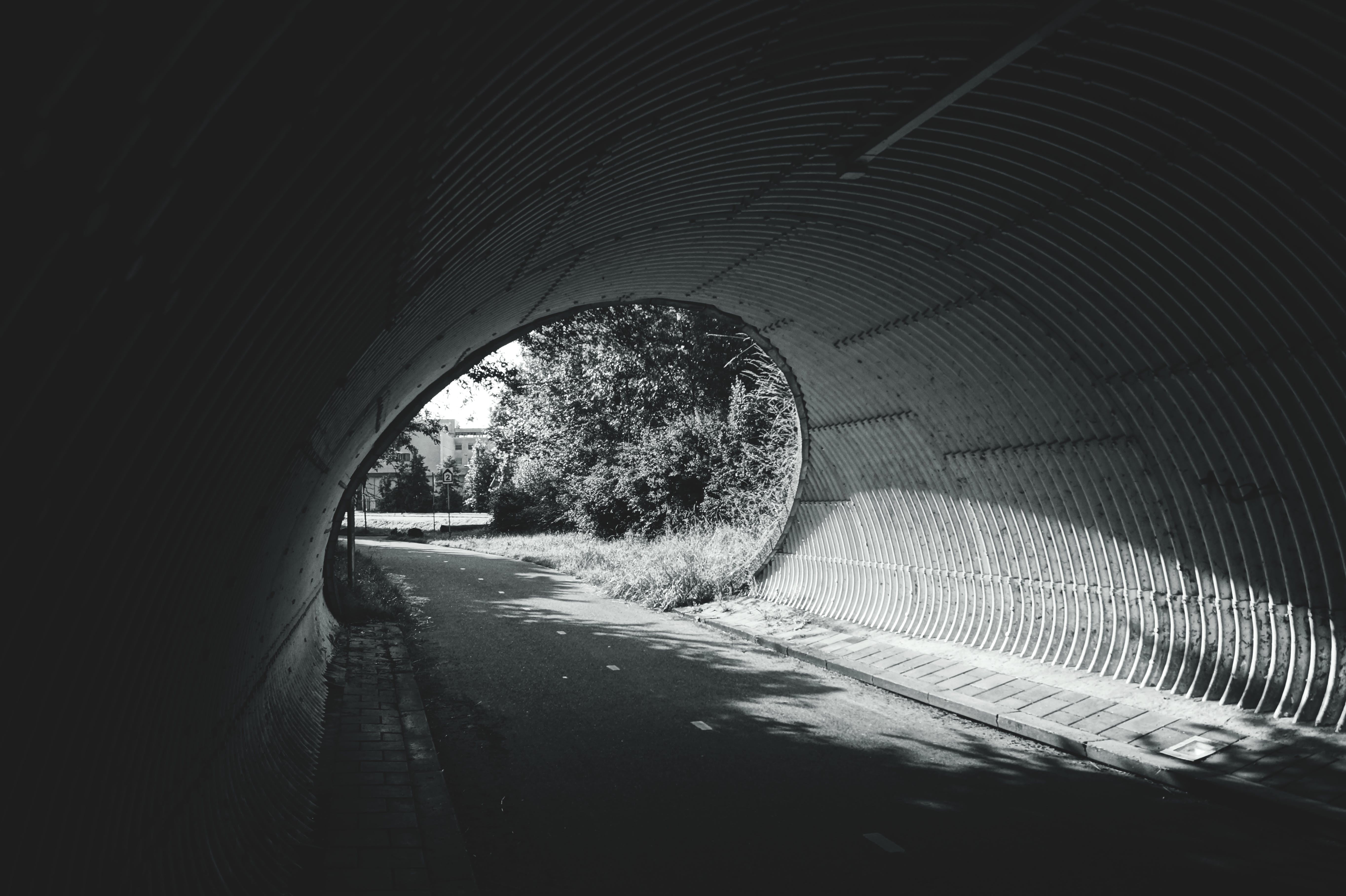 Free stock photo of light, black-and-white, road, landscape
