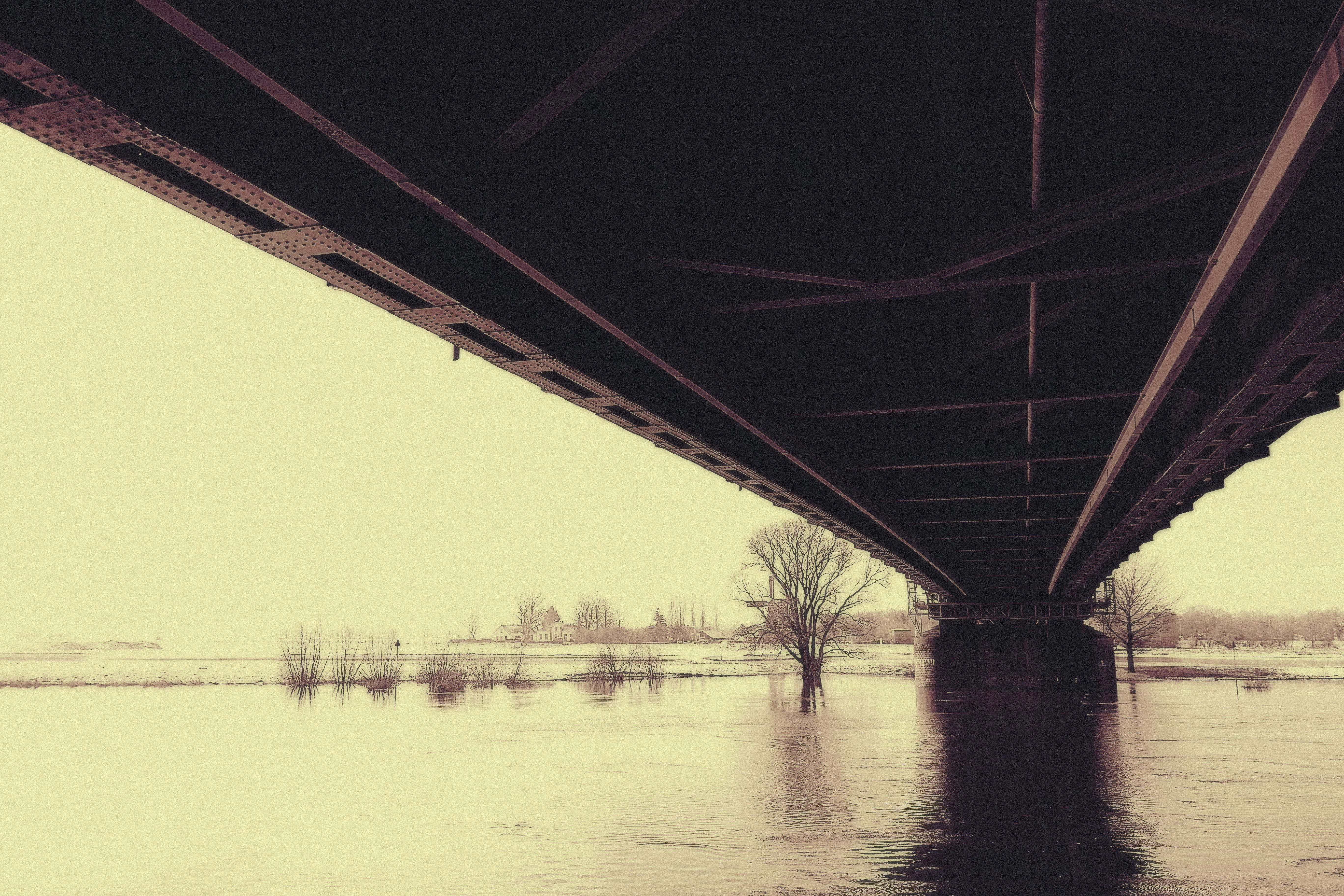 Grayscale Photography of River Under Bridge