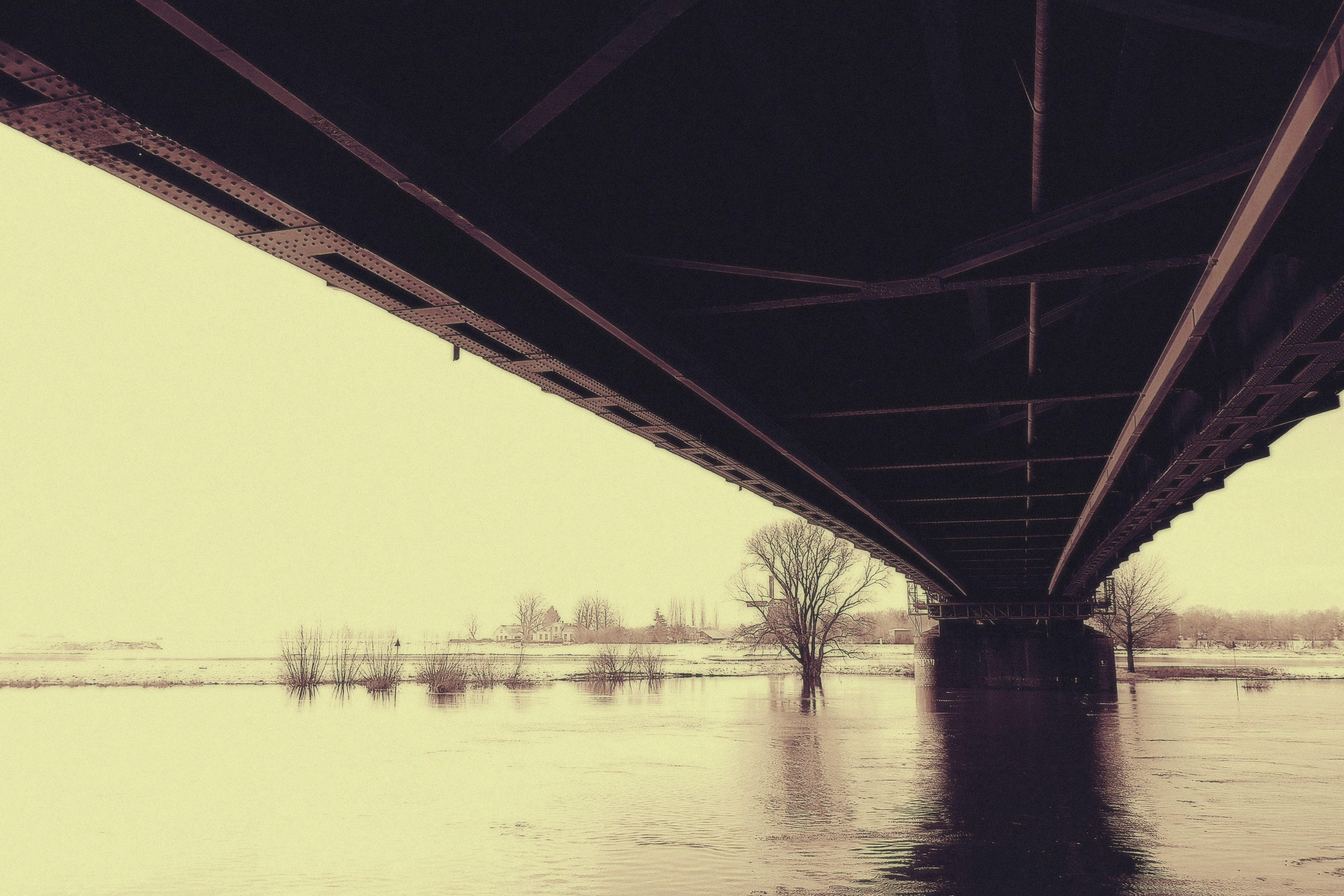 Základová fotografie zdarma na téma architektura, černobílá, denní světlo, krajina