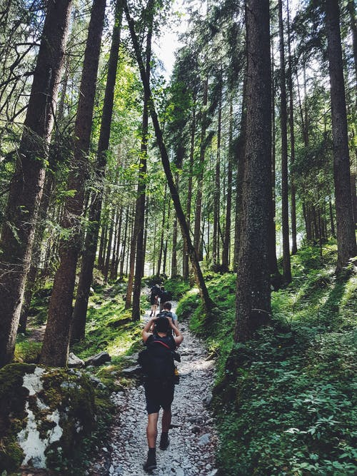 1000 Beautiful Hiking Photos Pexels Free Stock Photos