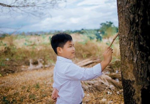 Gratis arkivbilde med asiatisk gutt, barn, bruke, dagslys