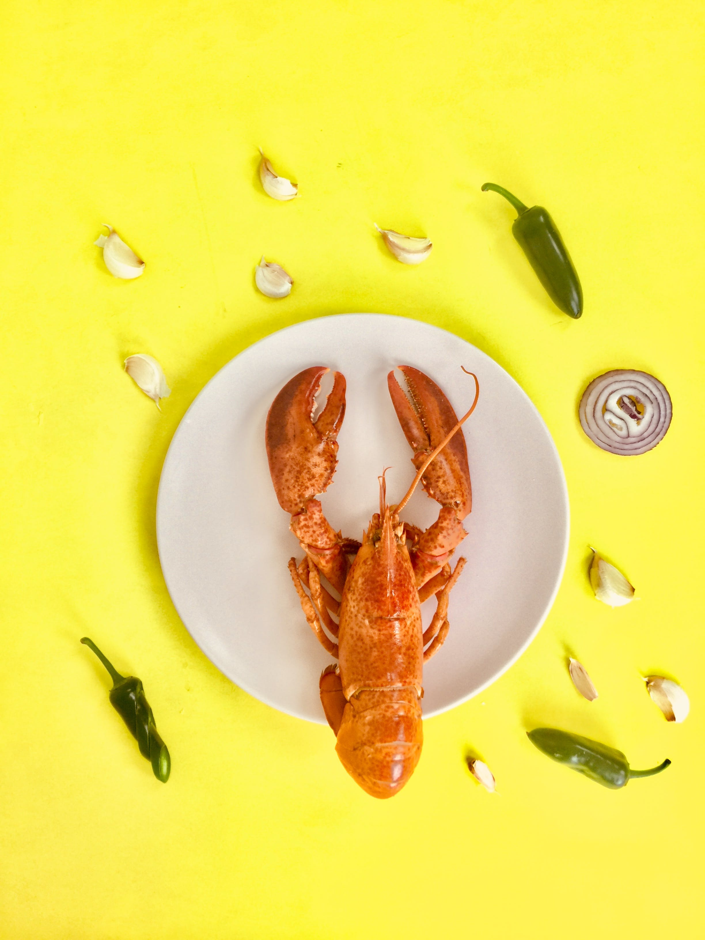 Lobster on Round White Ceramic Plate