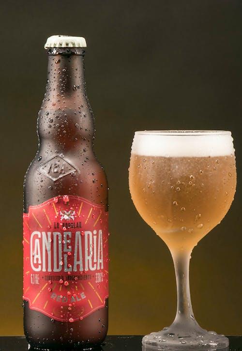 Бесплатное стоковое фото с бутылка пива, пиво, чашка и пиво
