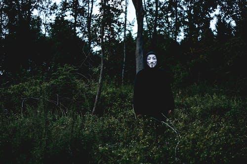 Základová fotografie zdarma na téma dospělý, krajina, les, maska