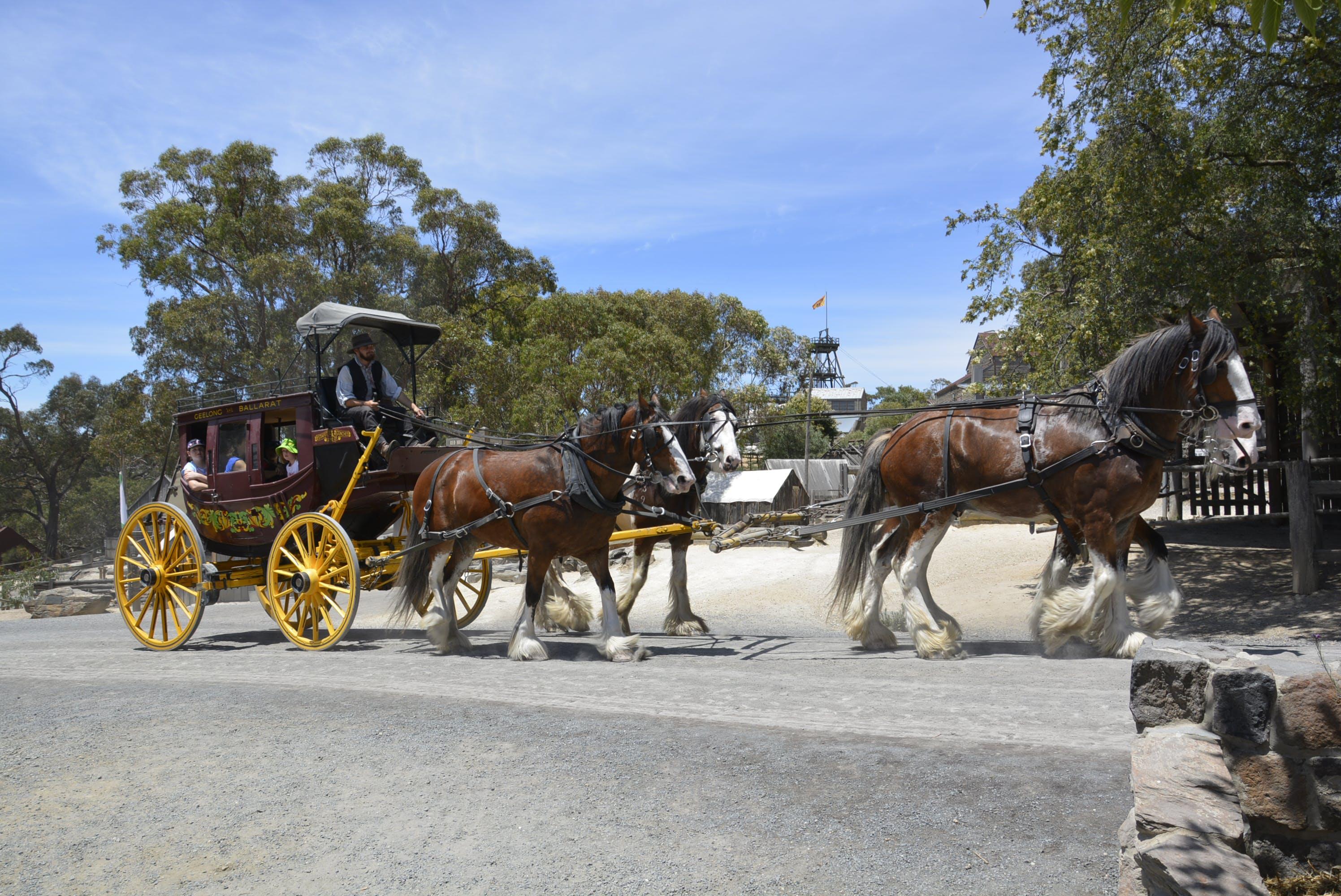 Free stock photo of #goldmining, #goldrush, #horses, #stagecoach