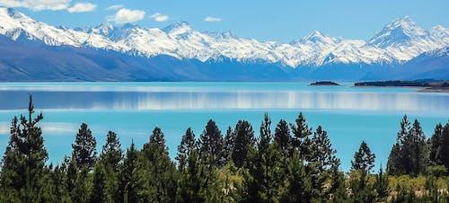 Бесплатное стоковое фото с вода, горный хребет, горы, деревья