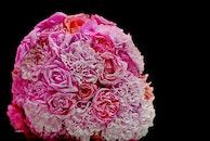 flowers, bouquet, roses