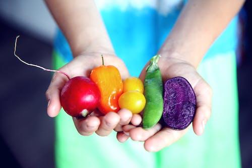 คลังภาพถ่ายฟรี ของ LGBT-H, การกินเพื่อสุขภาพ, การเลือก, คละ