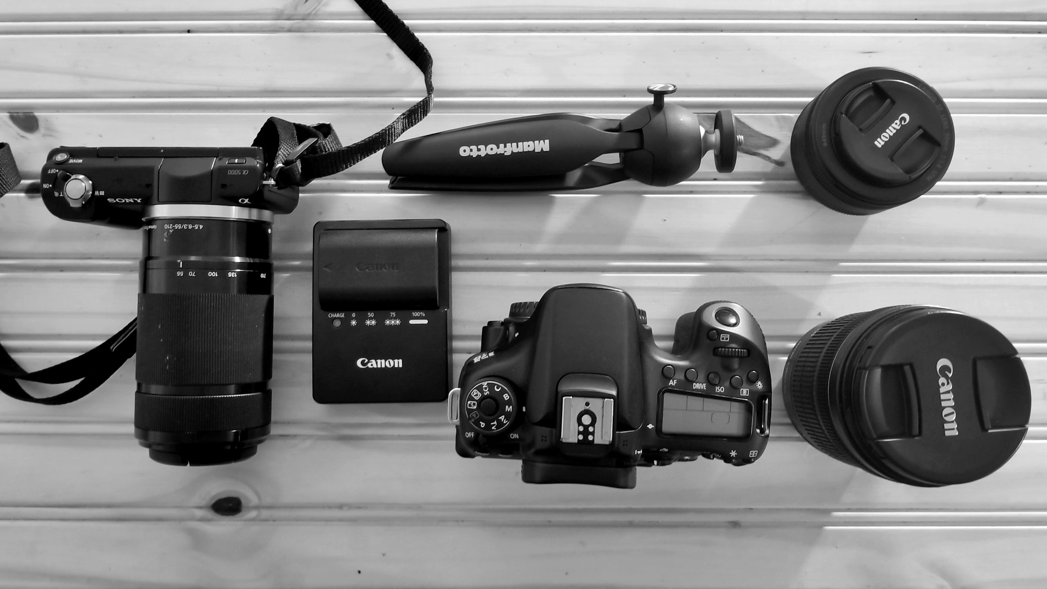 사진작가, 카메라, 카메라 장비, 캐논의 무료 스톡 사진