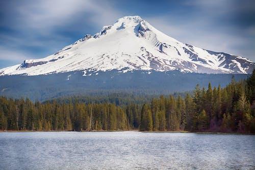 Foto profissional grátis de água, altitude, alto, árvores