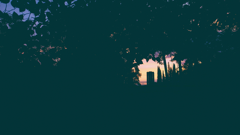Free stock photo of behind, city, cityscape, dark