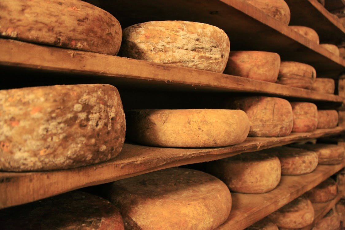 Free stock photo of cheese, food, italian