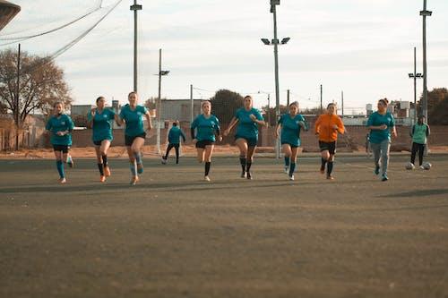 Foto d'estoc gratuïta de camp de futbol, futbol, pilota de futbol