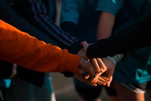 Imagine de stoc gratuită din cooperare, echipă, mâini, muncă în echipă
