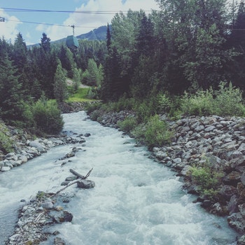 River Between of Grey Pebbles and Green Trees