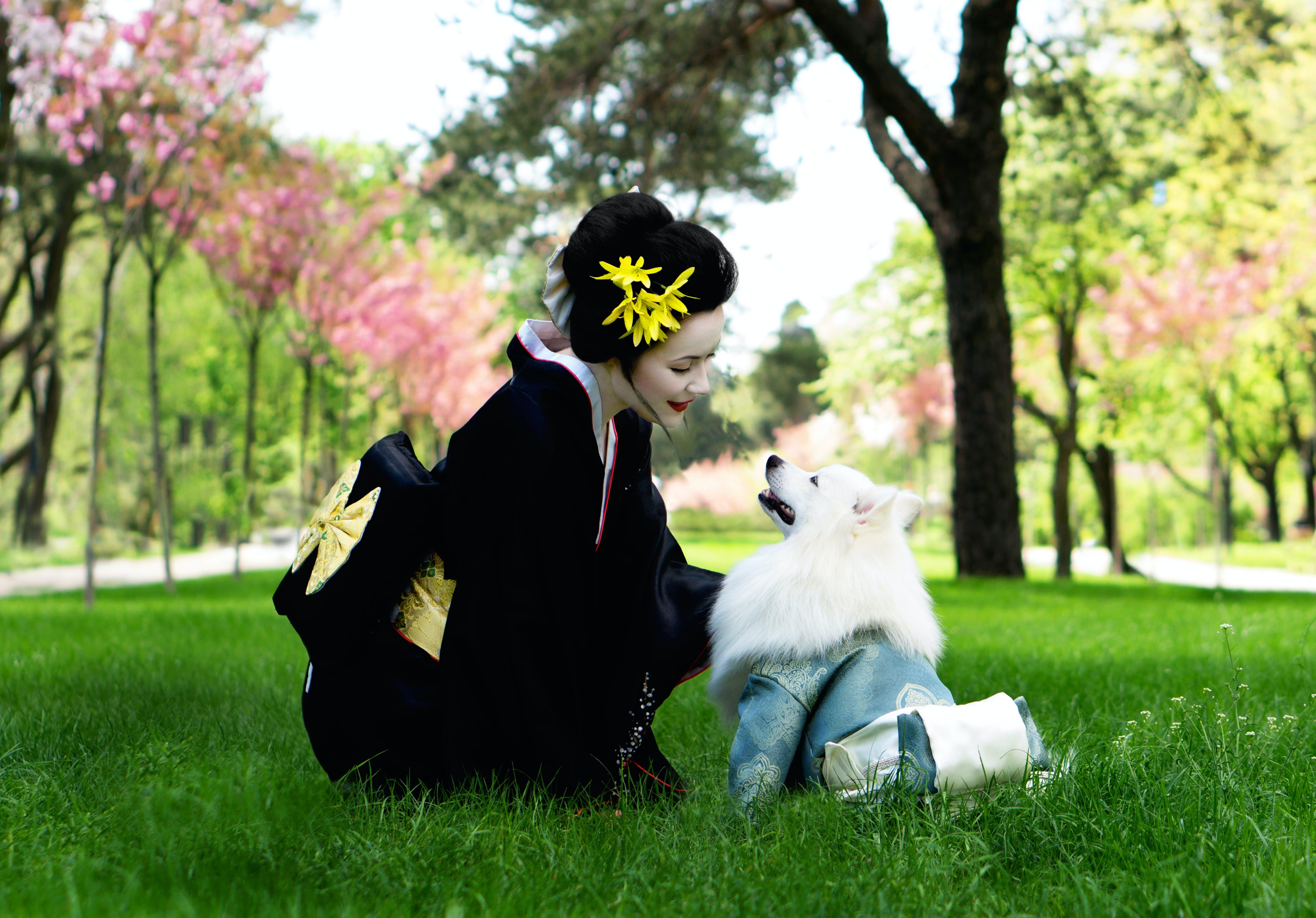 Woman In Black Kimono Looking At White Japanese Spitz