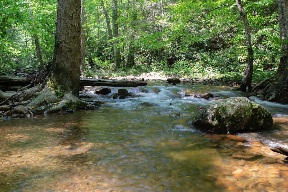 agua, aguas de montaña, caídas