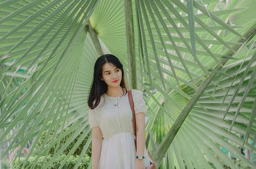 Gratis arkivbilde med asiatisk jente, asiatisk kvinne, asiatisk person, attraktiv