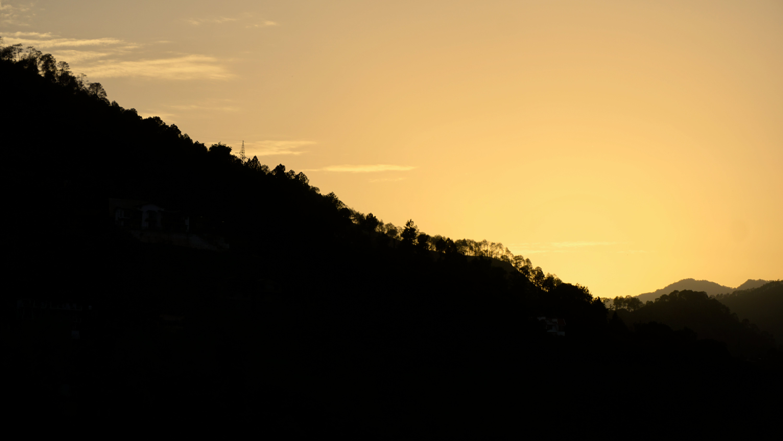 Free stock photo of sky, sun, trees, silhouette