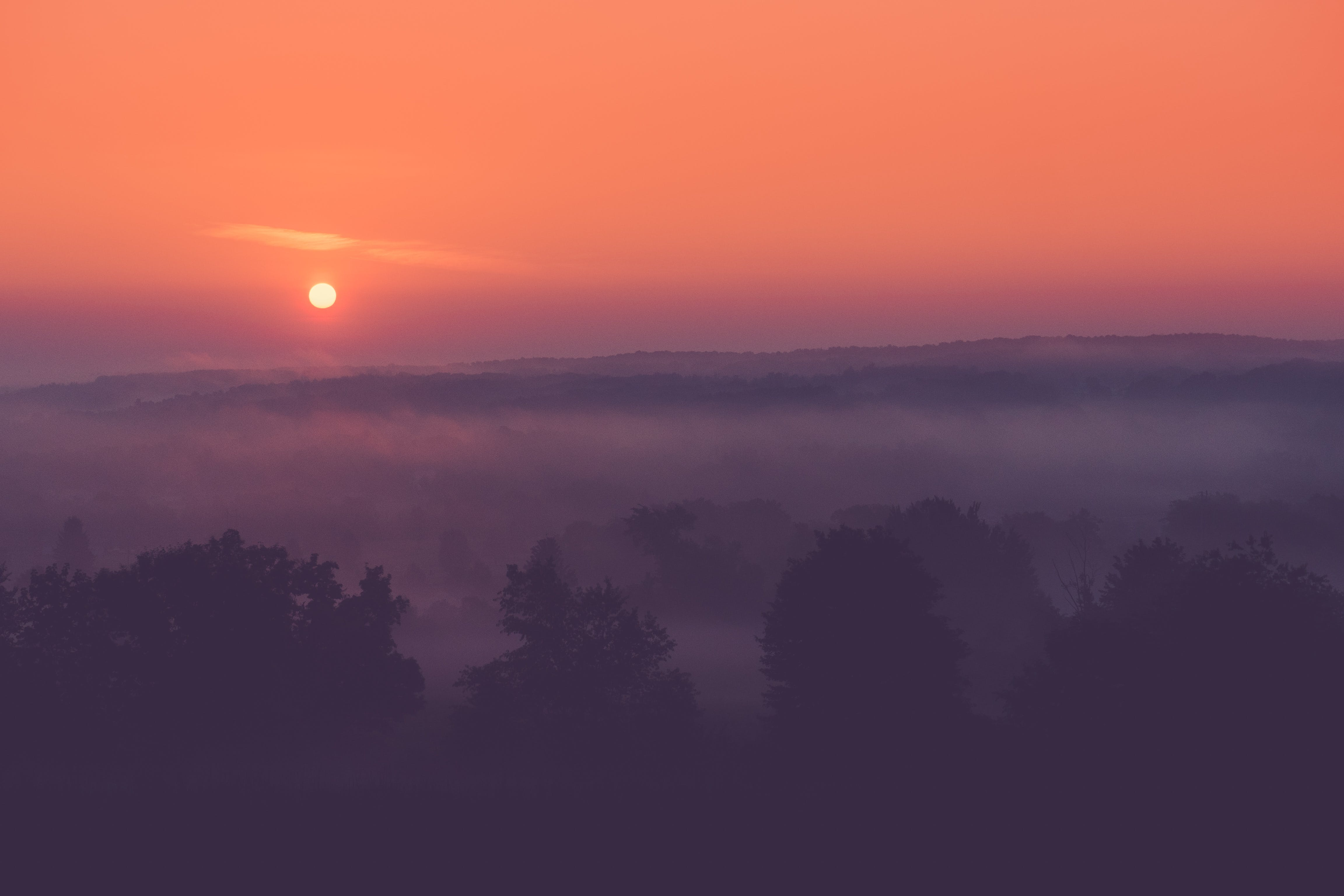 Free stock photo of landscape, sun, sunrise, morning