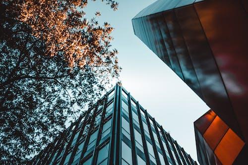 Δωρεάν στοκ φωτογραφιών με αρχιτεκτονική, Ελβετία, κτήριο, λήψη από χαμηλή γωνία