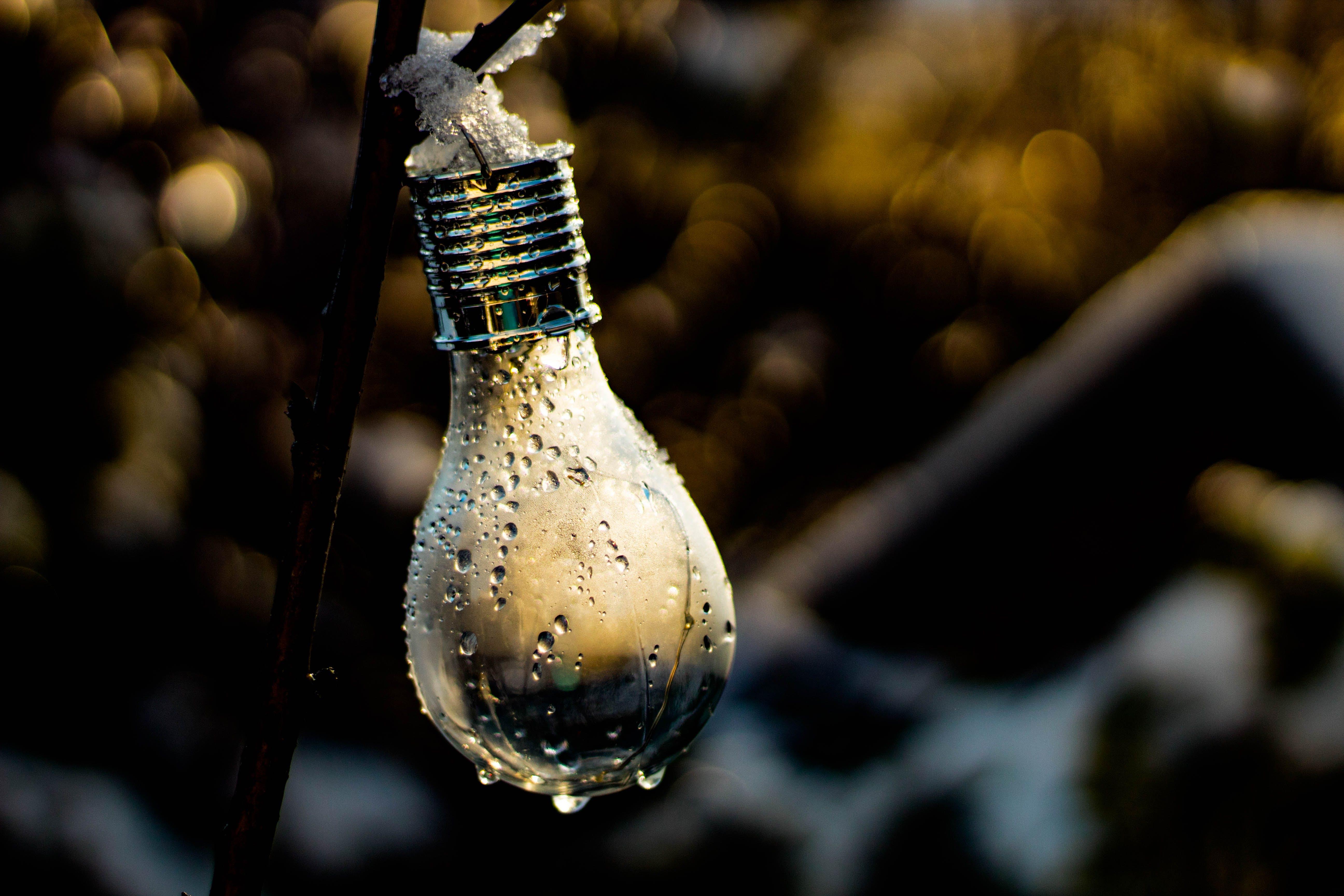 Kostenloses Stock Foto zu die glühbirne, eis, fokus, hängen