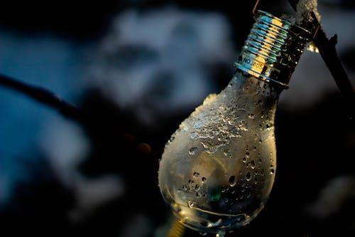 Foto stok gratis air, basah, bohlam, cahaya
