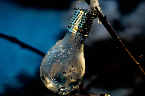 Free stock photo of cold, garden, lighbulb, winter