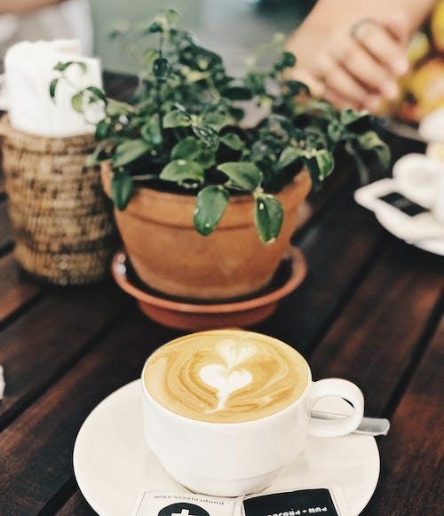 Fotos de stock gratuitas de arte latte, atractivo, beber, cacerola