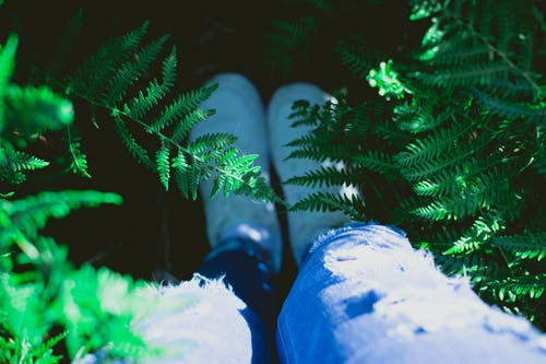 Foto d'estoc gratuïta de brillant, cames, colors, desenfocament