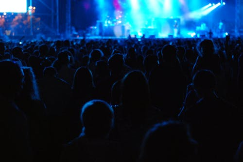 People Standing in Stadium While Watching the Concert