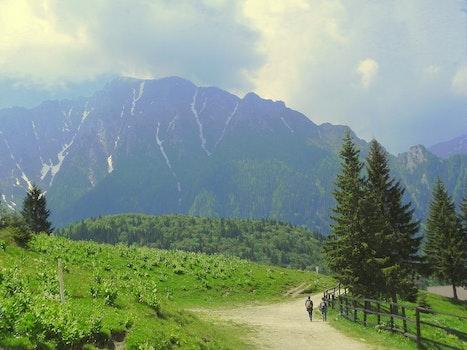 2 Person Walking Beside Grass Field Near Mountain