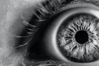 black-and-white, blur, sight