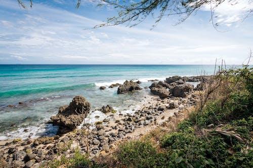 Безкоштовне стокове фото на тему «берег, берег моря, блакитне небо, відпустка»