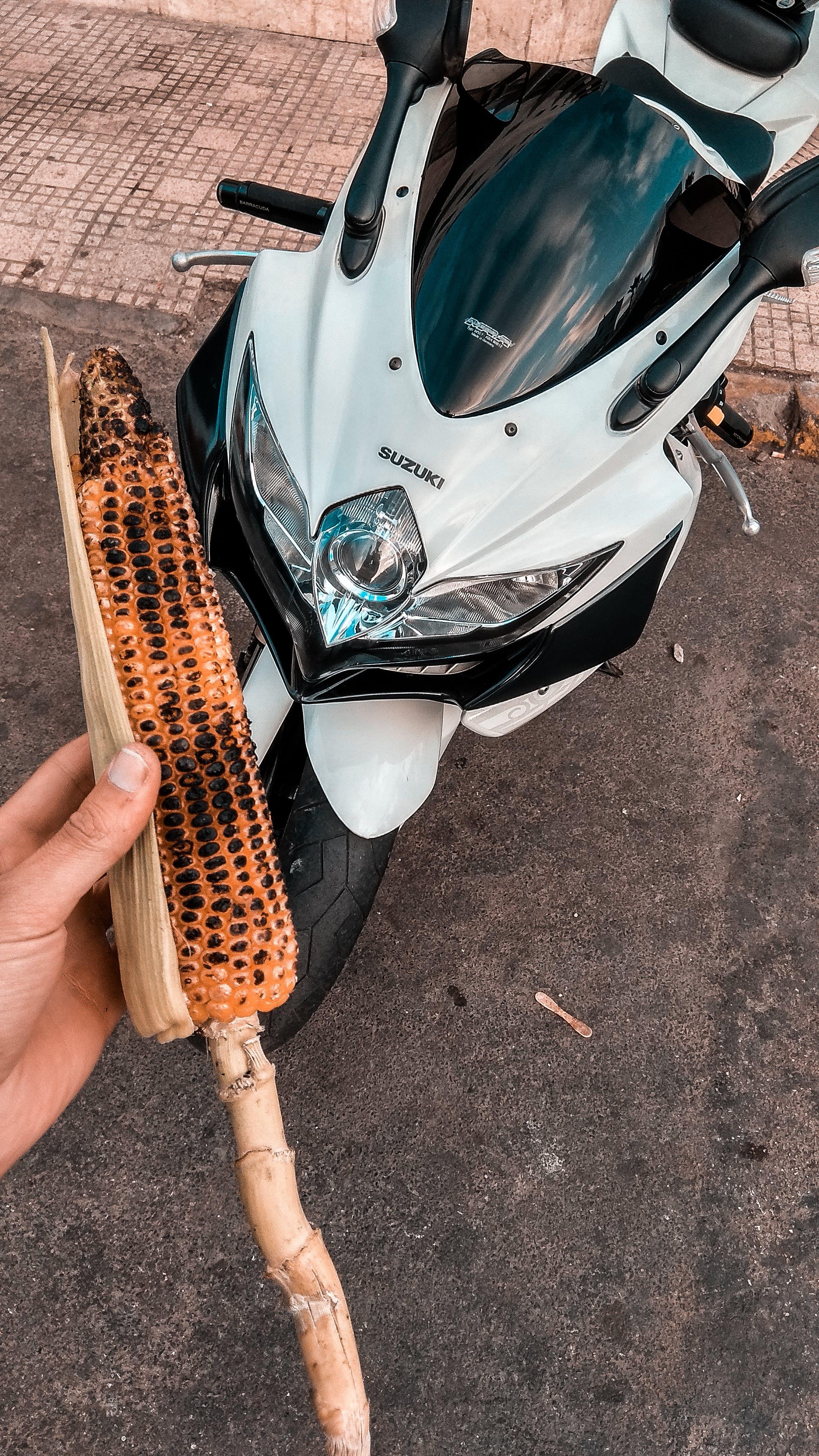 Základová fotografie zdarma na téma gsxr600, motocykl, oranžová & teal, sport