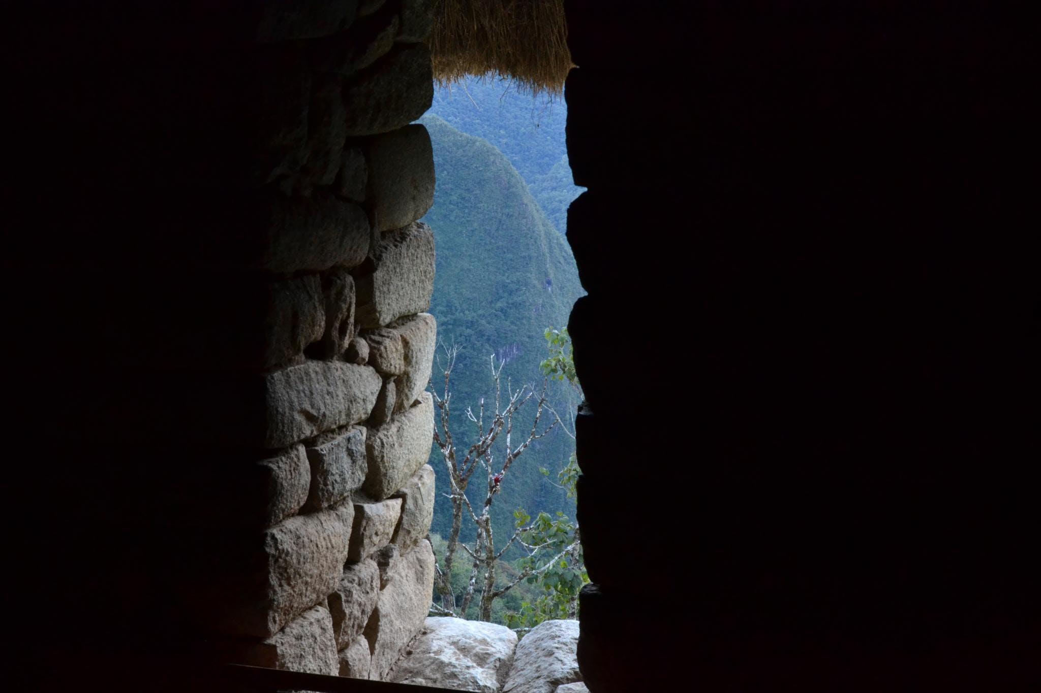 Free stock photo of aguas calientes, green, inca, inka
