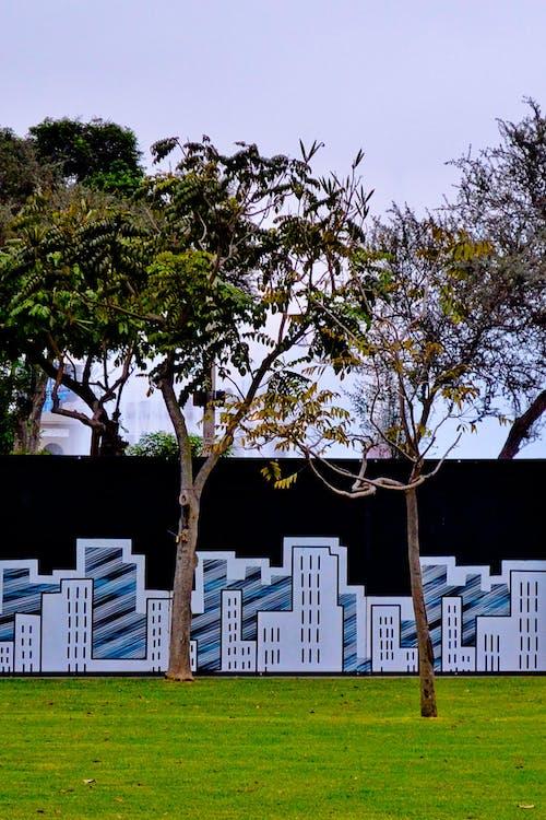 buildings, garden, green