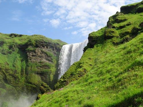 Ingyenes stockfotó fű, Izland, természet, vízesés témában