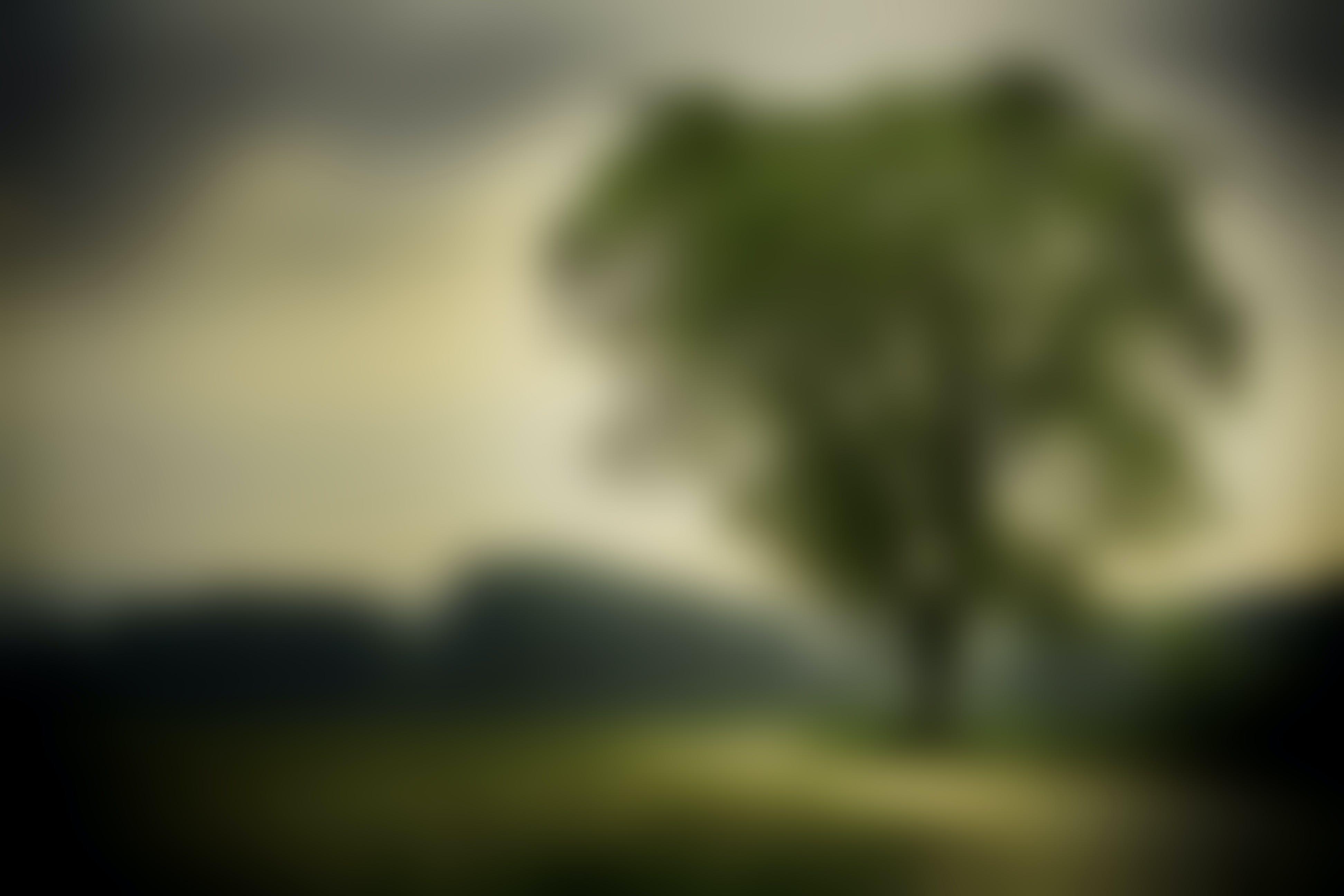 Free stock photo of nature, blur, tree, green