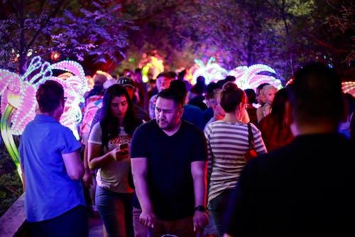 Foto d'estoc gratuïta de carrer, gent, home, llums