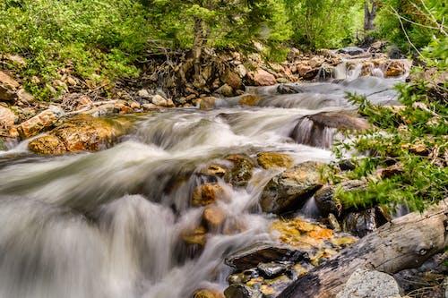 Бесплатное стоковое фото с вода, деревья, каньон, красивый