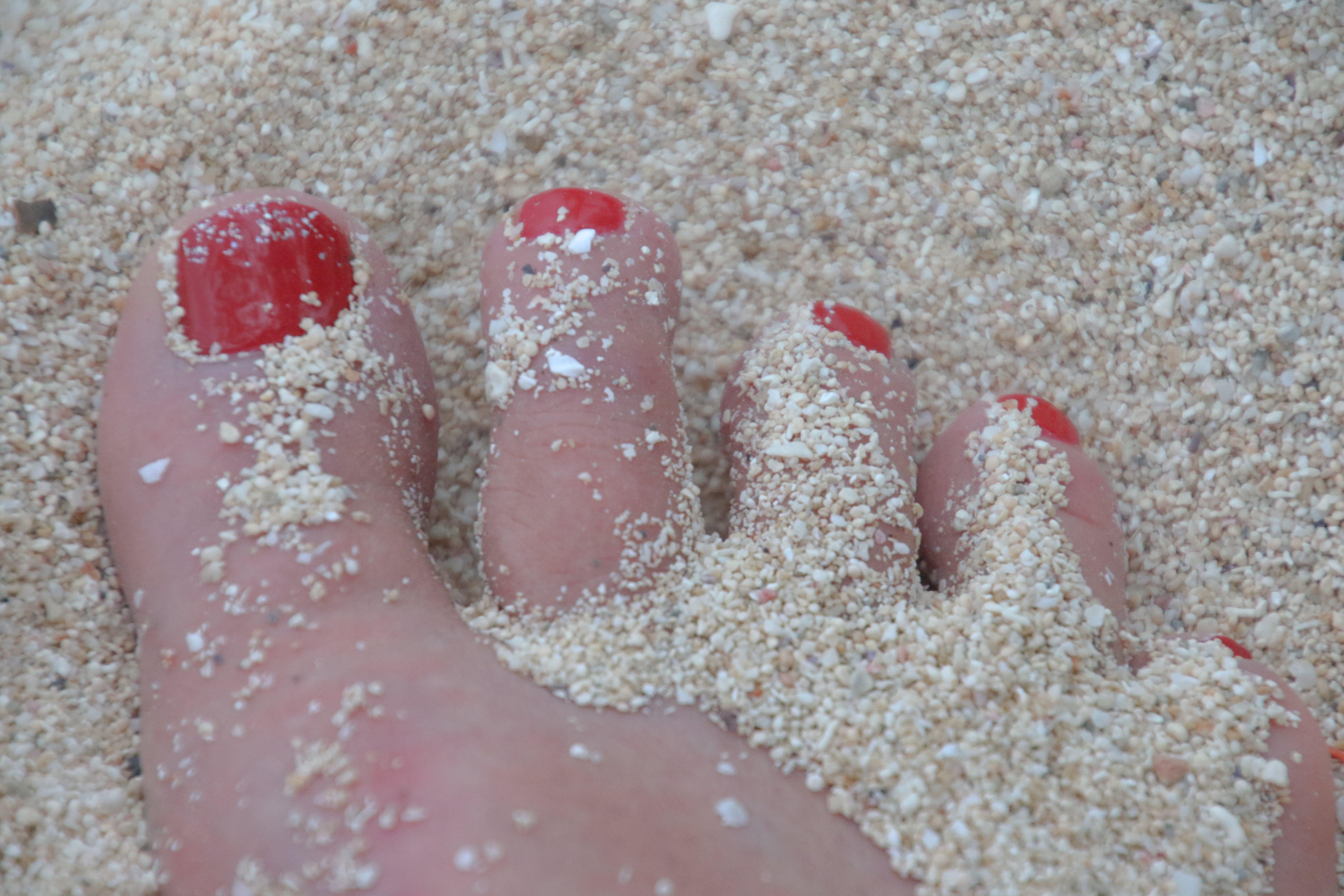 Free stock photo of beach, holiday, sand, feet