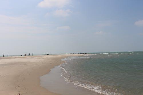 Foto profissional grátis de conhecimento, danush kodi, fundo do mar, imagem de fundo