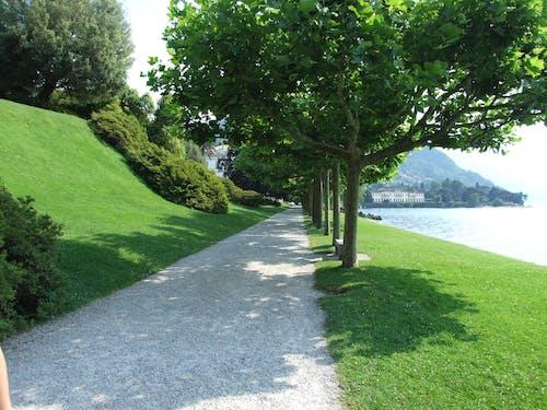 Ilmainen kuvapankkikuva tunnisteilla como-järvi, huvila, puut, ruoho