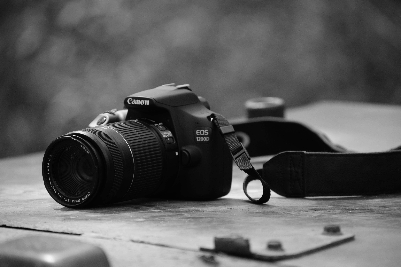 Kostenloses Stock Foto zu canon, kamera, linse, schwarz und weiß