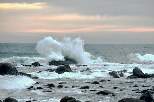 Free stock photo of ocean, surf, waves breaking