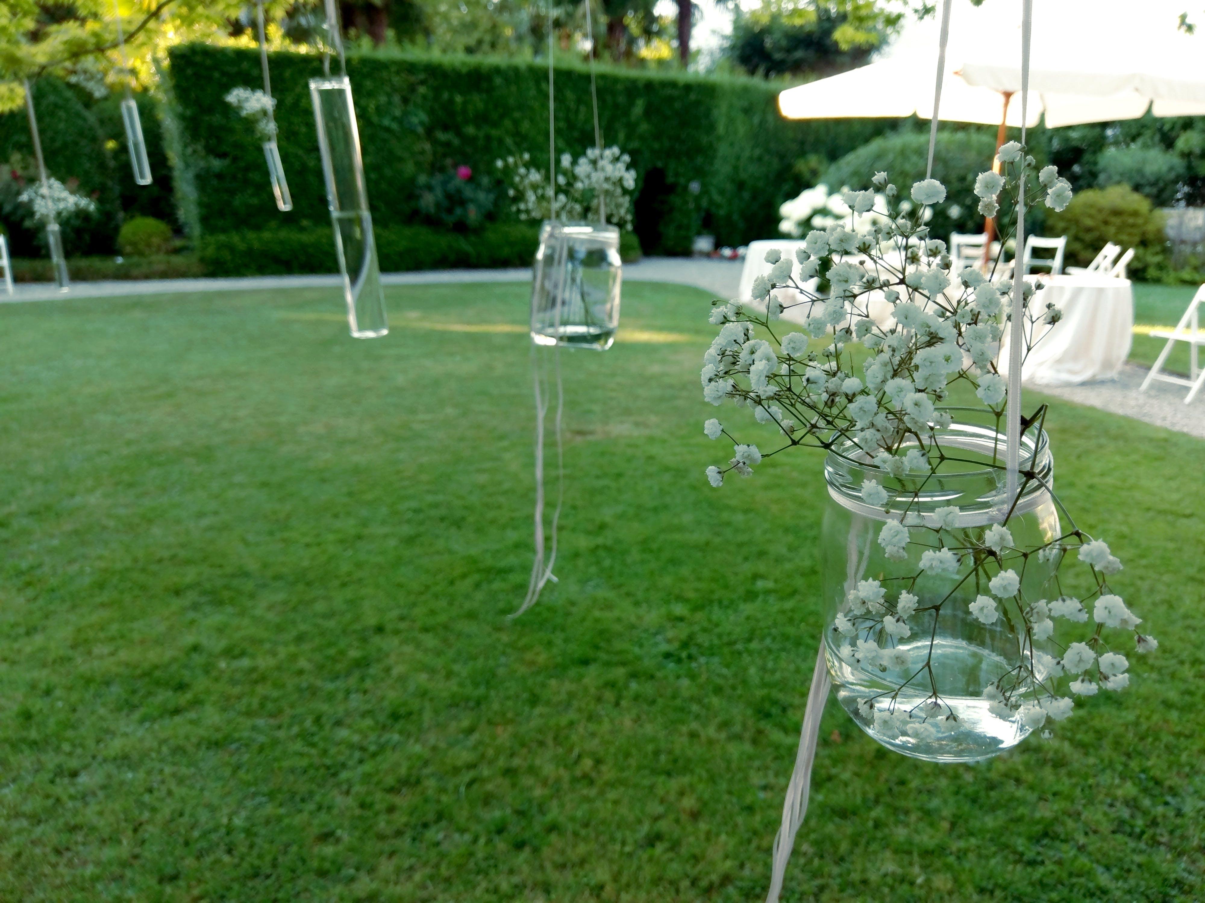 Free stock photo of flowers, grass, glass jar